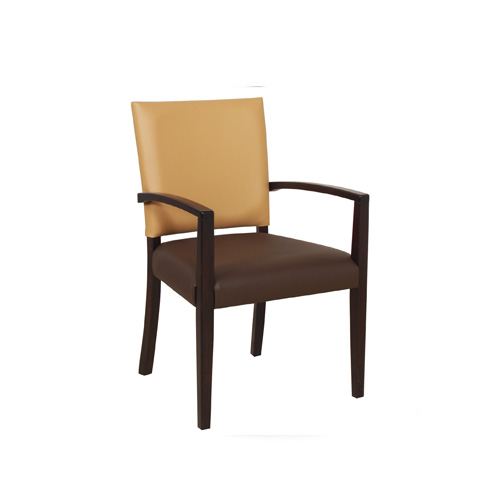 Steeton Arm Chair STEE001 Image