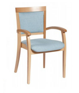 Begonia Arm Chair BEGO001 Image