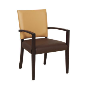 Steeton Arm Chair STEE001 Image