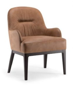 Helen Lounge Chair HELE004 Image